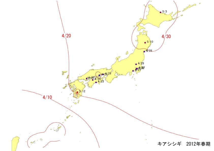 kiashi_springline.jpg