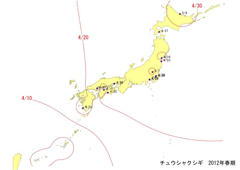 tyuusyaku_springLine.jpg